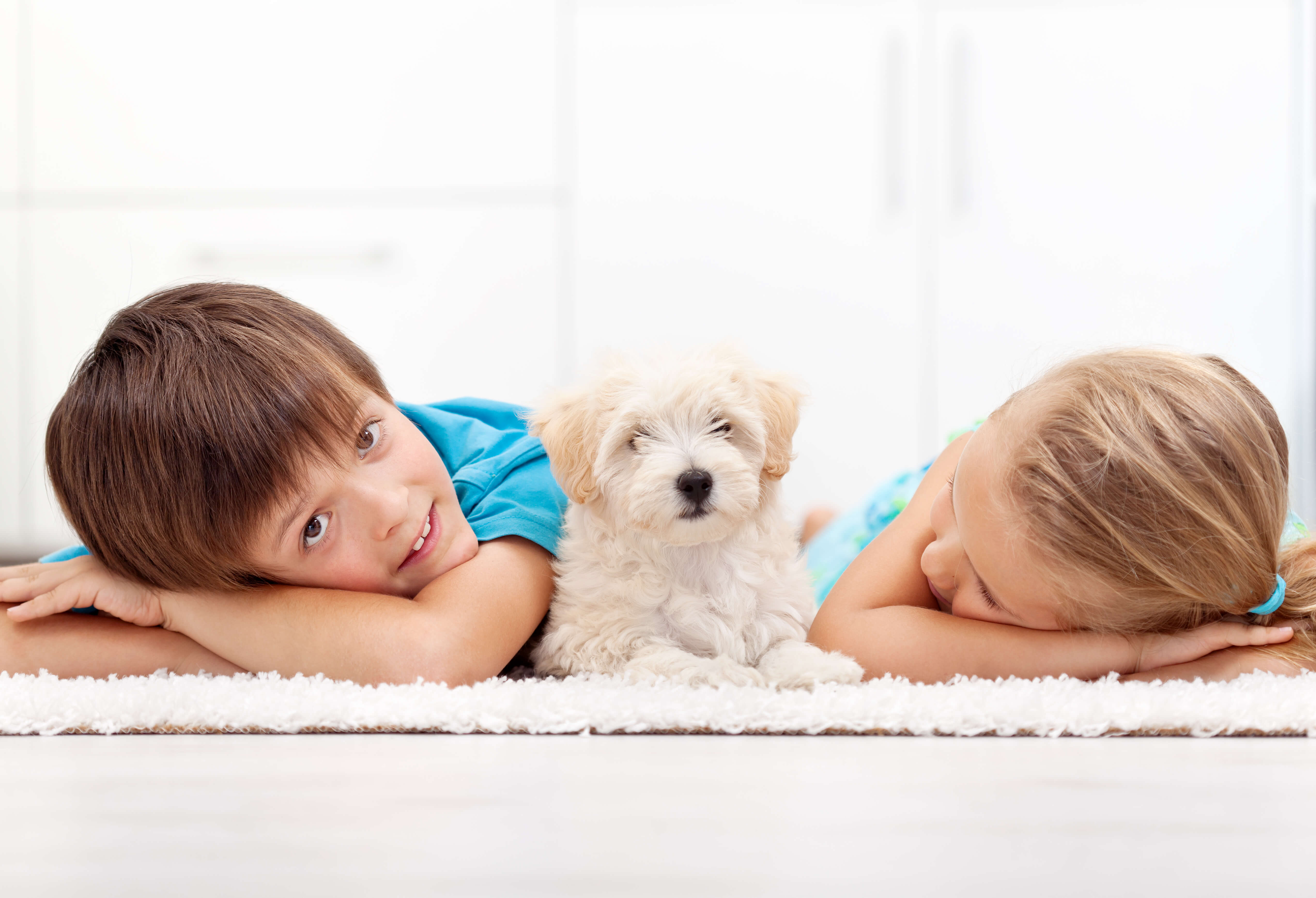 Two kids with a dog