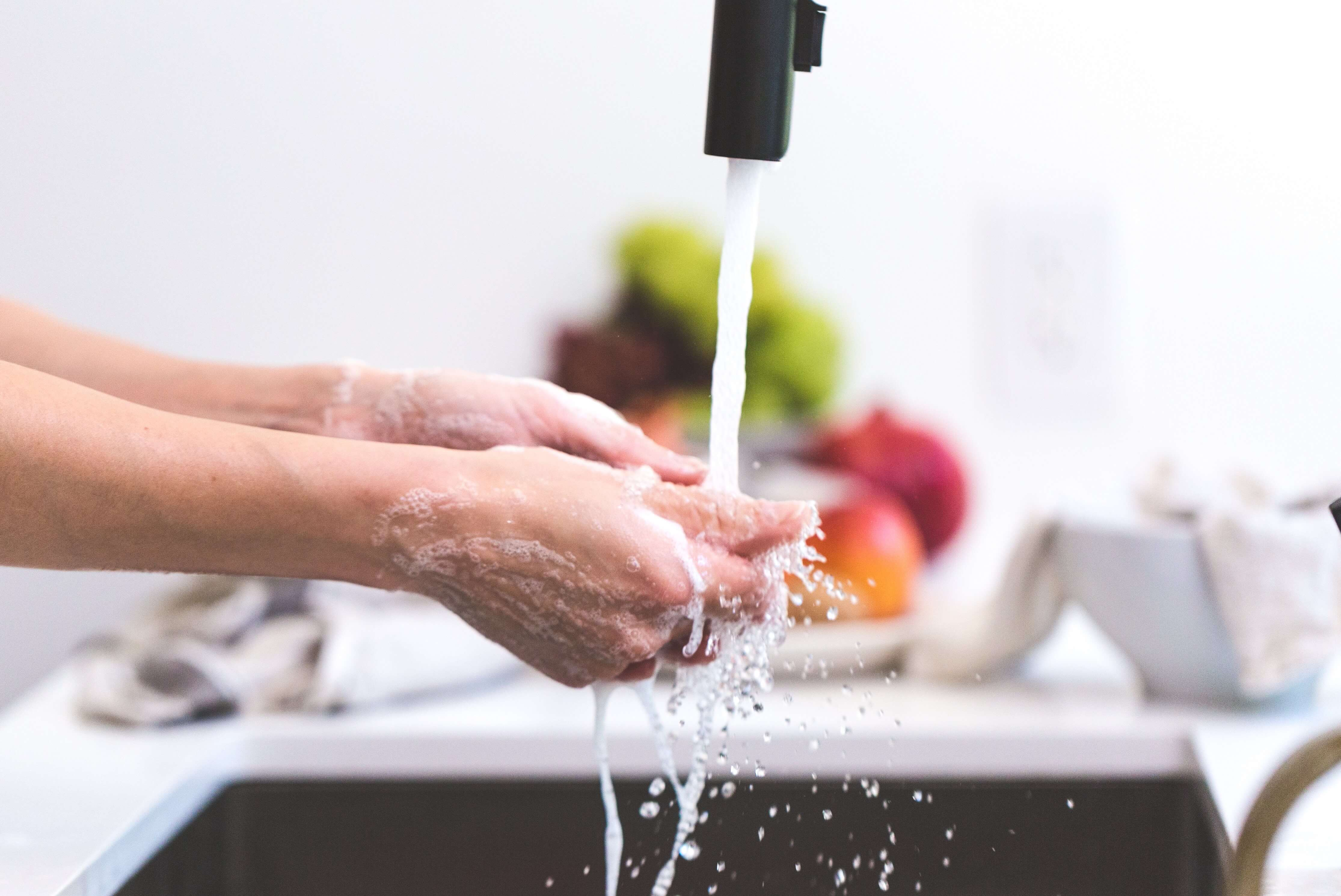 garbage disposal maintenance in Illinois by Lake Cook Plumbing